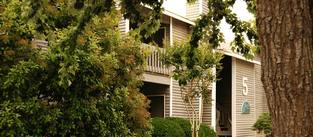 Windscape-Exterior